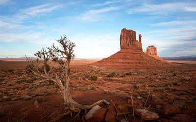 Oljato-Monument Valley, West Mitten Butte, Colorado Plateau, red rocks, sunset, evening, USA Landmark, Arizona, USA