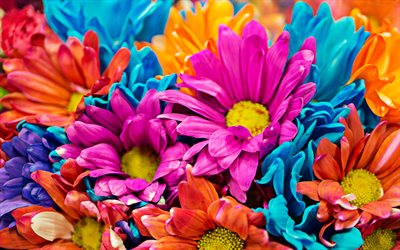 colorful flowers, bouquet of colorful flowers, beautiful flowers, colorful bouquet, macro