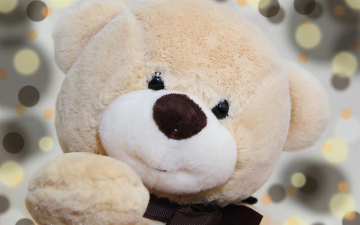 Download Wallpapers Teddy Bear Beige Bear Cub Cute Toys Bear