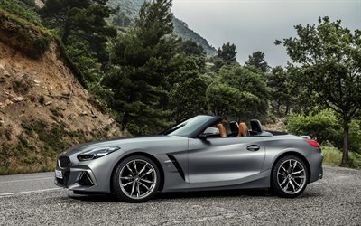 BMW Z4, 2019, M40i, new silver Z4, G29, convertible, sports coupe, side view, exterior, German cars, BMW