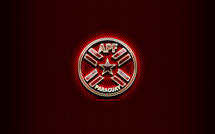 Paraguay National Football Team Background 8