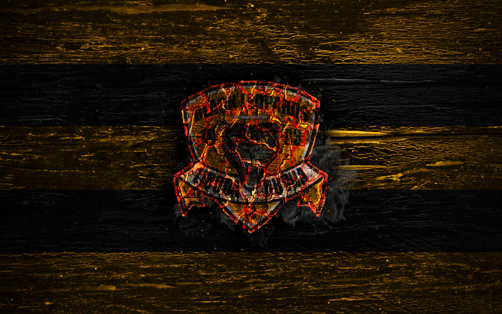 Black Leopards FC, fire logo, Premier Soccer League, yellow and black lines, South African football club, grunge, football, soccer, Black Leopards logo, wooden texture, South Africa