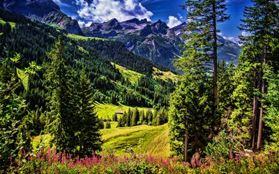 Switzerland, 4k, Alps at summer, HDR, Sanetschhore, beautiful nature, Alps, Europe
