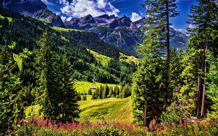 تحميل خلفيات سويسرا 4k جبال الألب في الصيف Hdr Sanetschhore الطبيعة الجميلة جبال الألب أوروبا لسطح المكتب مجانا صور لسطح المكتب مجانا
