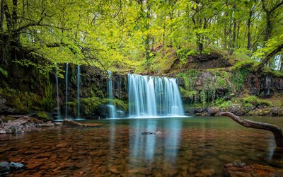 waterfall, lake, forest, green trees, beautiful waterfall, water concepts