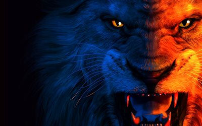 lion, art, muzzle, anger, predators
