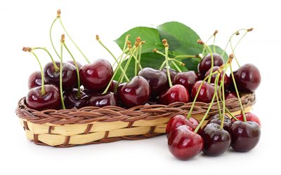 cherries, ripe berries, cherries on a white background, cherries on plates