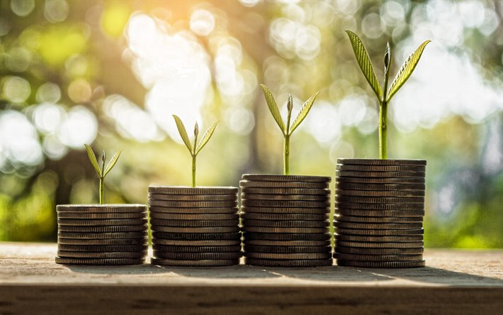 Money growth, stacks of coins, diagram of the coins, finance concepts, green leaves on coins, money concepts