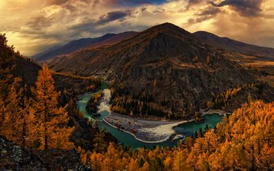 Altai, 4k, autumn, forest, river, mountains, Russia, Asia, beautiful nature