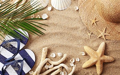 beach concepts, sand, beach accessories, summer, travel, sea sand, starfish, seashells