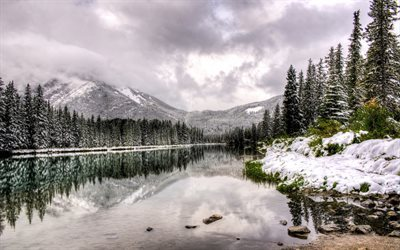 Canada, lake, winter, forest, Alberta, fog, mountains
