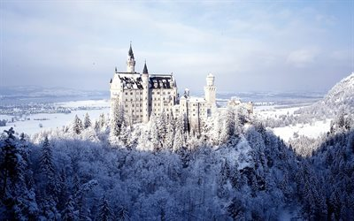 neuschwanstein castle, winter, forest, bavaria, germany