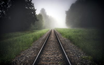 railway, morning, fog, railway in the forest, trees, rails, travel concepts