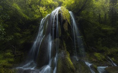 Forest, waterfall, rock, jungle, beautiful waterfall