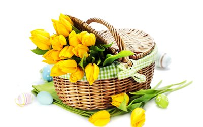 basket with yellow tulips, Easter eggs, white background, yellow tulips, spring, yellow flowers, Easter