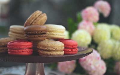 macaroons, Almond Cookies, sweets, pastries, red macaroons, chocolate macaroons