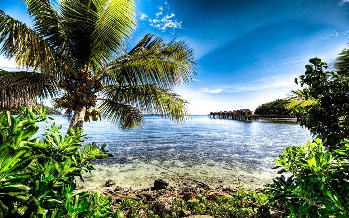 Scarica sfondi fiji paradiso isola palma mare hdr per for Foto per desktop mare