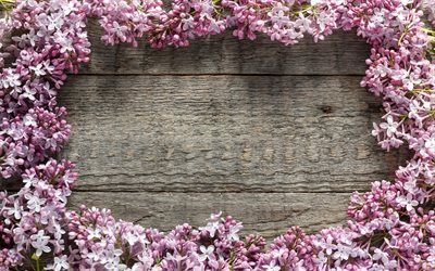 lilac frame, wooden background, gray wooden texture, spring flowers, lilac, flower frame