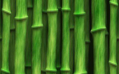 green bamboo texture, macro, bamboo textures, bamboo canes, bamboo, green wooden background