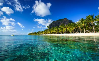 Le Morne Brabant, Indian Ocean, Mauritius, azure lagoon, beach, tropical island, ocean, palms, summer travel concepts