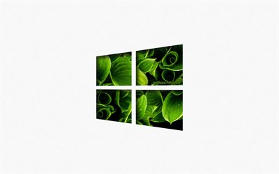 Windows 10, green eco logo, emblem, creative art, Windows, logo, green leaves, white background