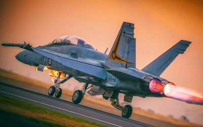 Boeing FA-18EF Super Hornet, back view, Royal Australian Air Force, attack aircraft, combat aircraft, Australian Army, Boeing