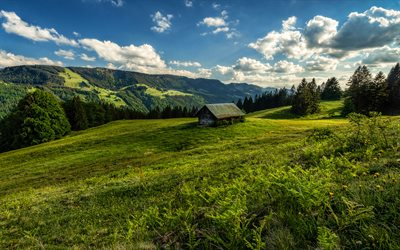 Germany, 4k, summer, meadow, mountains, Bavaria, HDR, beautiful nature