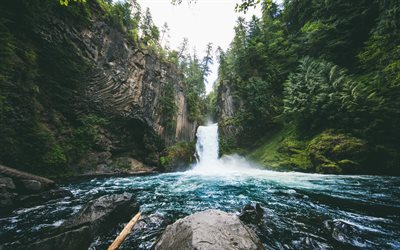 Toketee Falls, Waterfall, river, forest, beautiful scenery, USA, Oregon