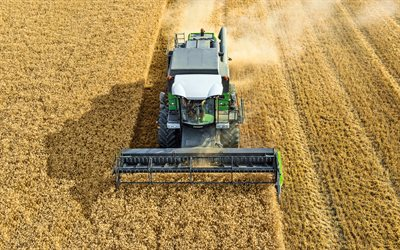 Fendt 5225 E, 4k, wheat harvesting, 2020 combines, EU-spec, combine, sunset, combine-harvester, agricultural machinery, Fendt