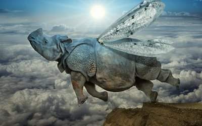 clouds, mountains, dawn, winged rhino
