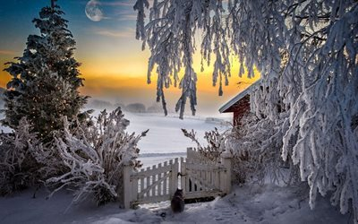 house, ate, sunset, winter landscape, fence