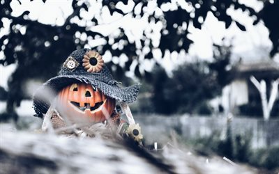 halloween, October 30, pumpkin, decoration, forest