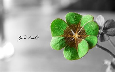 good luck, four-leaf clover, texture