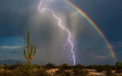 rainbow, arizona desert, cactus, lightning