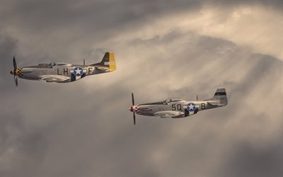 north american, mustang, airshow, p-51d
