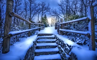 winter night, snow, city park, navacerrada, spain