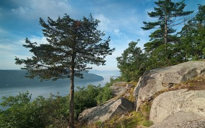 pine, lake, rock, lake george, state of new york