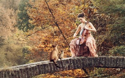 girl, autumn, stone bridge, cello
