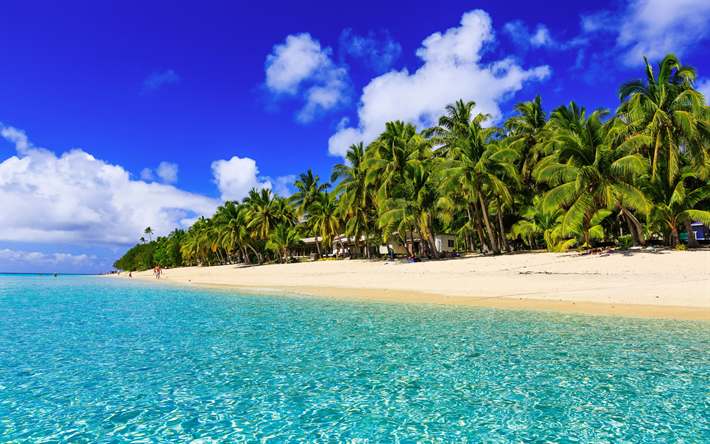 Scarica Sfondi Spiaggia Estate I Tropici Resort Palme Oceano