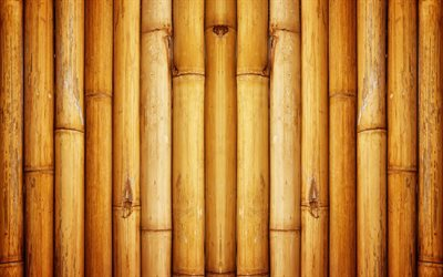 bamboo, brown bamboo, bamboo wall