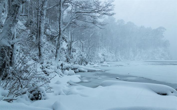 Lago Del Toro Winter Snow Frozen Lake Landscape Huerquehue National