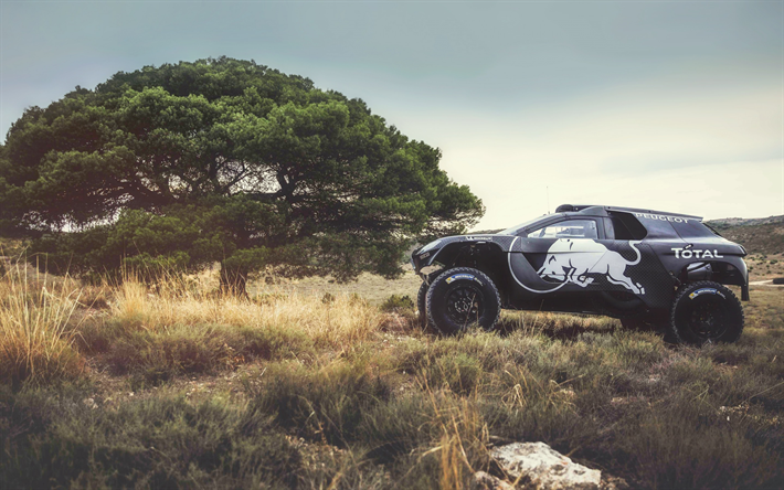 download wallpapers peugeot 2008 dkr 2018 dakar rally black rally suv desert race peugeot. Black Bedroom Furniture Sets. Home Design Ideas