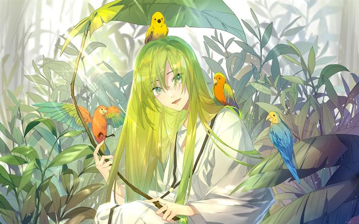 Download wallpapers Enkidu, parrots, anime characters, manga