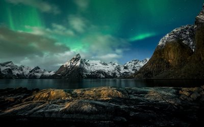 aurora borealis, sea, snow, winter, Norway, Reine