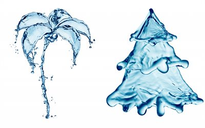 water, concepts, water palm, water Christmas tree, splashes of water