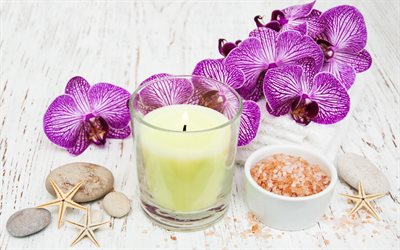 spa accessories, sea salt, a branch of orchids, pink orchids, candles, starfish, spa concepts, wellness