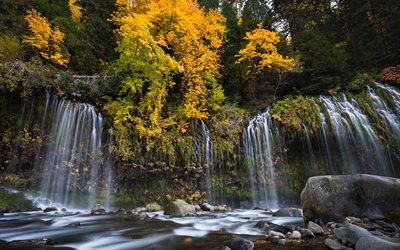 Mossbrae Falls, Sacramento River, autumn, waterfall, forest, California, USA, autumn landscape, yellow leaves