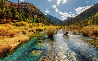 Jiuzhaigou, mountain river, autumn landscape, nature reserve, mountain landscape, China