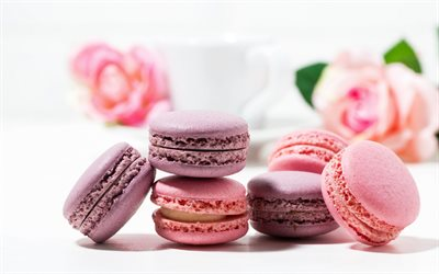pink macaroons, biscuits, sweets, pastries, colorful biscuits