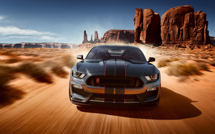 04 Mustang Gt >> Download wallpapers Ford Mustang, 2019, Shelby, GT350 ...